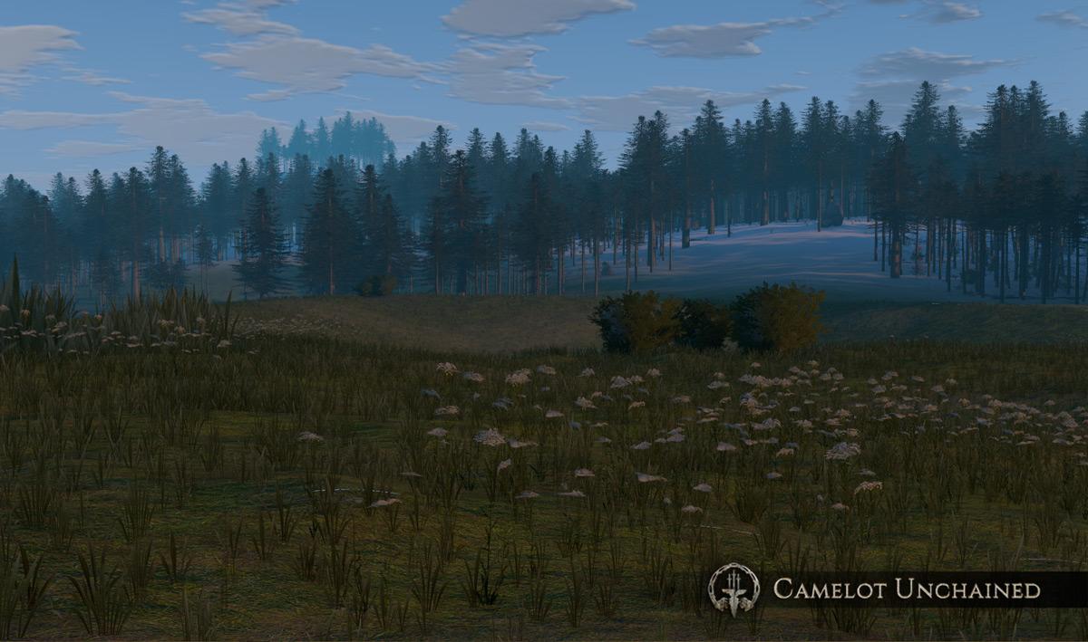 CU_Landscape_007_1200