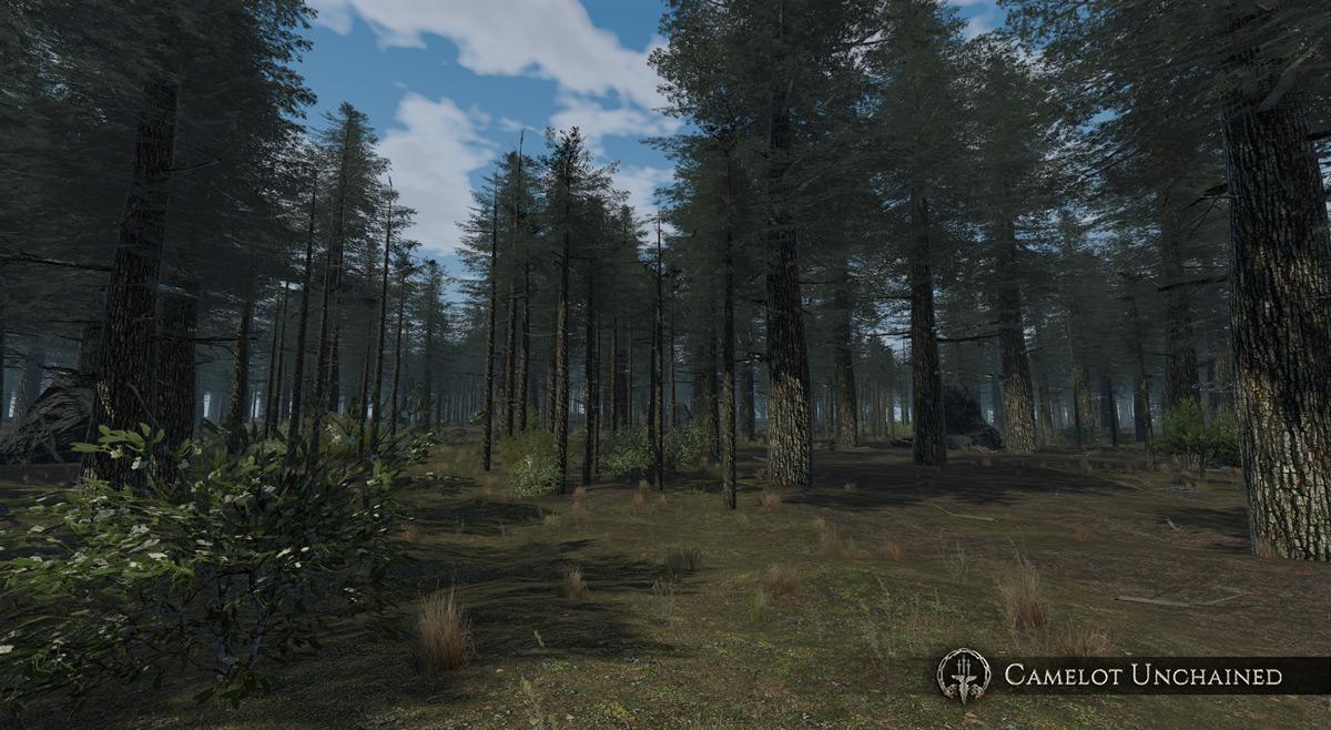 pine_vik_001_600