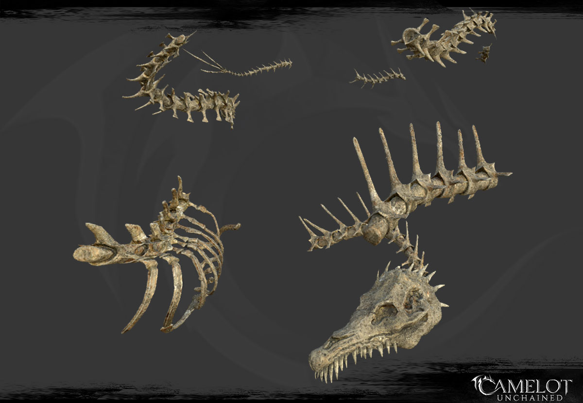 fossil_textured_1200
