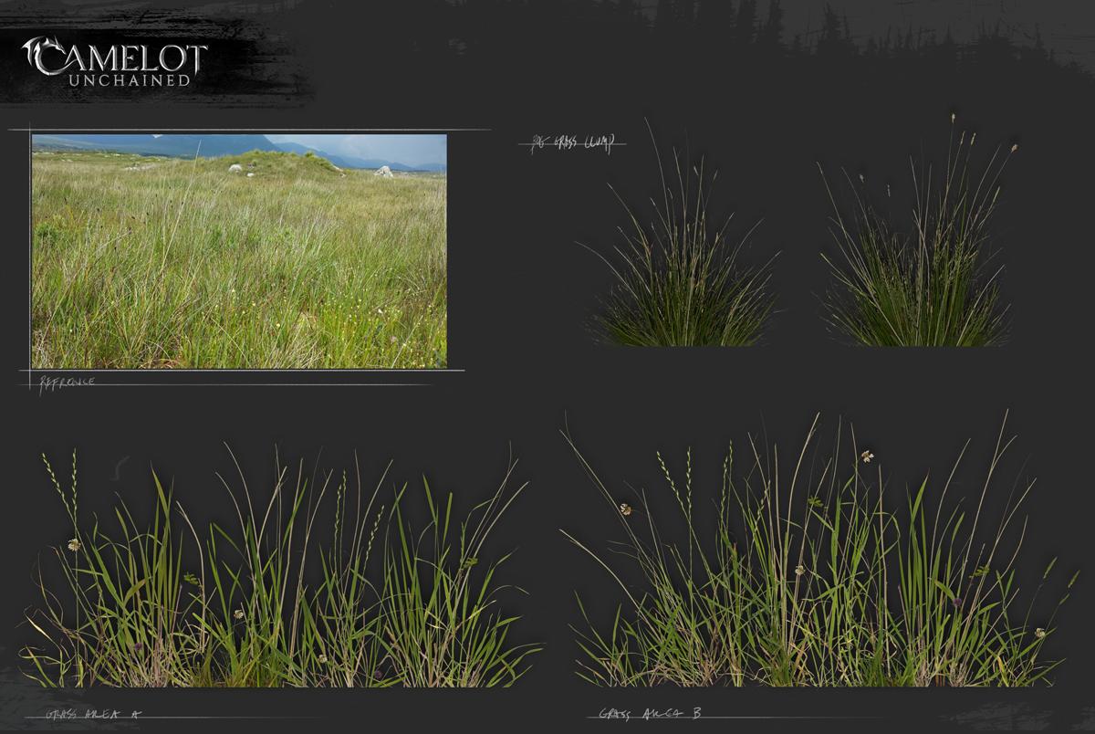 bog_grass_1200