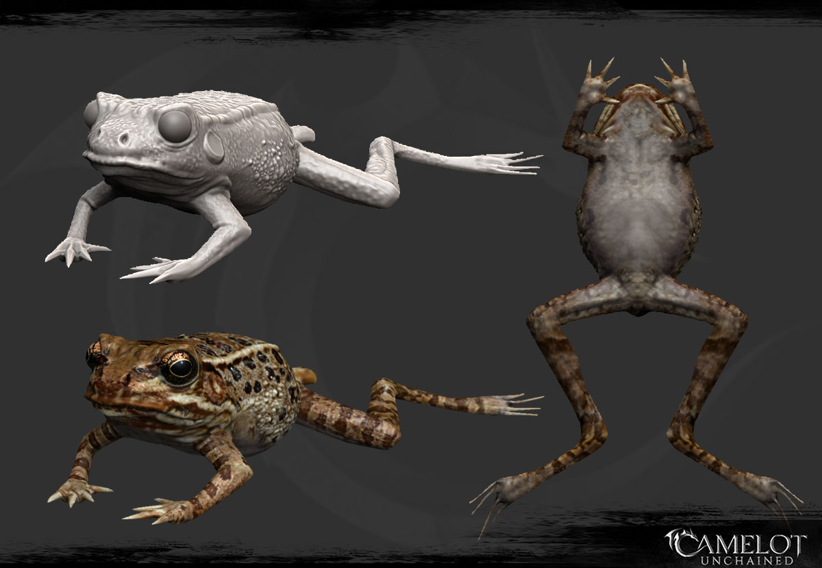 frog_1200